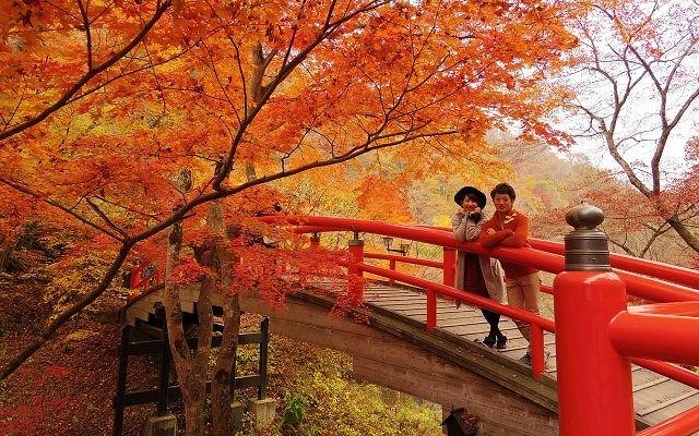 婚活 告白 セリフ 紅葉とカップル